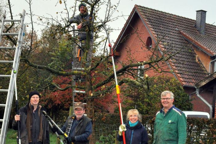 Der BUND Warendorf pflegt und schneidet Obstbäume in Telgte-Westbevern-Vadrup.